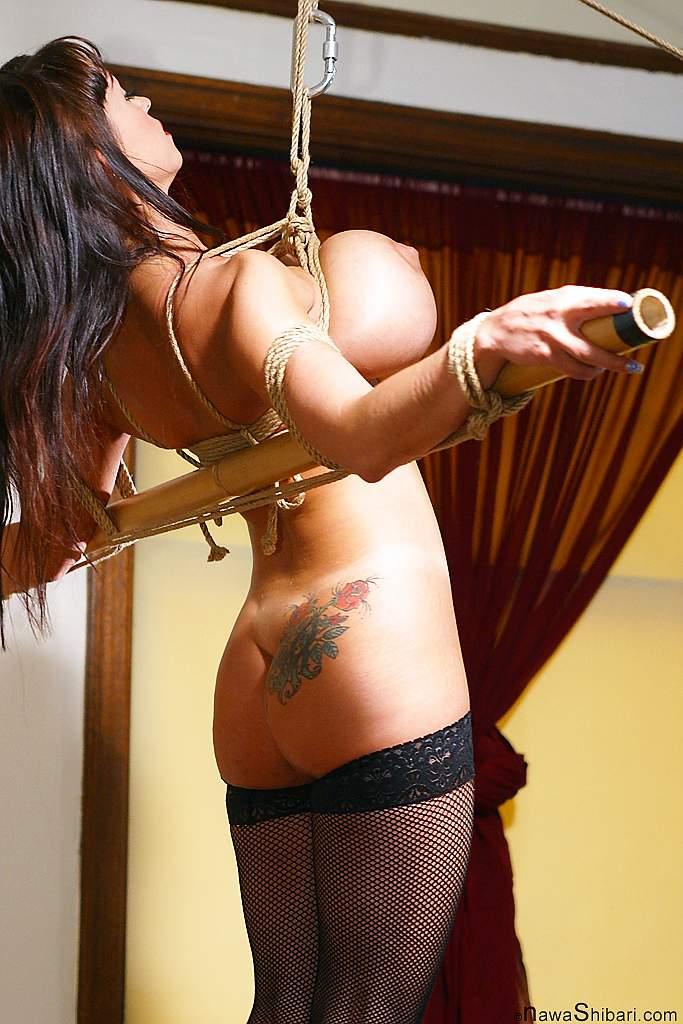 Big Tit Rope Bondage Porn Videos Pornhubcom
