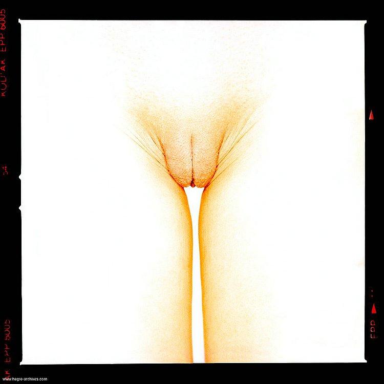 Los tipos de vaginas...